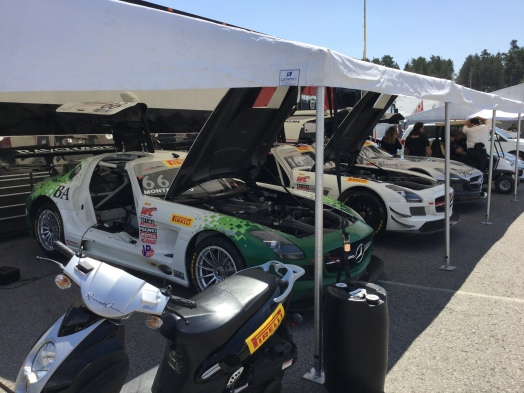 Race cars lined up with hoods open